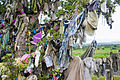 Seir Kieran St. Ciaran's Bush Detail 2010 09 09.jpg