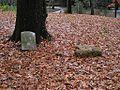 Shady Grove Cemetery Memphis TN 2012-12-09 010.jpg