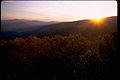 Shenandoah National Park SHEN9170.jpg