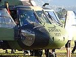 Sikorsky UH-60 Black Hawk Australian Army (27157010596).jpg