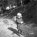 Silva, 3 leta, Planina, gre s koškom z materjo na njivo 1954.jpg