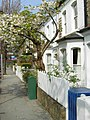 Sirdar Road, Notting Hill - geograph.org.uk - 1235768.jpg
