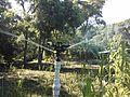 Sistema de riego con bomba de ariete, Pijijiapan, Chiapas 10.jpg