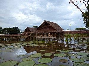 Leticia, Amazonas - Amazonas shore.