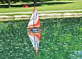 Slow but sure...- paisiblement sur l'étang du Centre de la Nature - panoramio.jpg