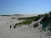 Dunes in Słowiński National Park