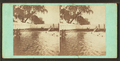 Smith's Island, by Cremer, James, 1821-1893.png