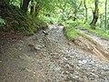 Snape Rake Lane - geograph.org.uk - 481672.jpg