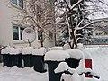Snow Caps 2 (15556682993).jpg