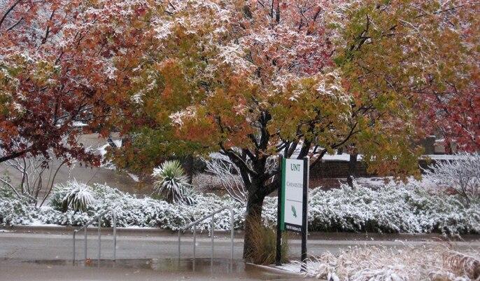 Snowdayuntchem