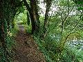 South Cerney canal.jpg
