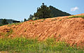 Spearfish Formation redbeds (Permian and-or Triassic; construction cut in Sundance, Wyoming, USA) 1 (19400055056).jpg