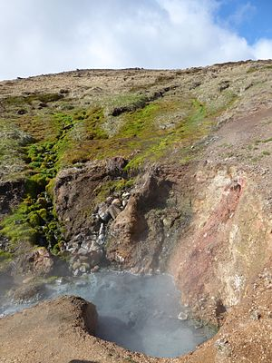 Hengill - A hot spring at the base of the Hengladir valley