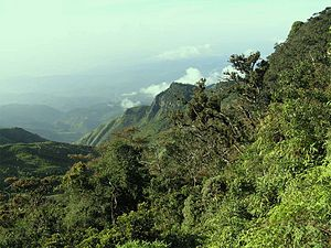 Horton Plains National Park - World's End, a sheer precipice within the park