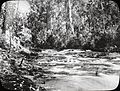 St. Georges River, Lorne, Victoria (4750279042).jpg