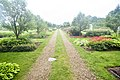 Stan Hywet Gardens (19033002112).jpg