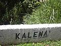 Starr-040518-0090-Cenchrus purpureus-view Kalena bridge-Kipahulu-Maui (24075890293).jpg