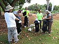 Starr-170913-0157-Cocos nucifera-CRB training with Kim Ray Pat Kailee and Leyla-CTAHR Urban Garden Center Pearl City-Oahu - Flickr - Starr Environmental.jpg