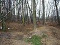 Steenweg naar As zonder nummer Terrein met loopgraven en bunkers - 146343 - onroerenderfgoed.jpg