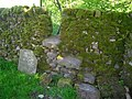 Stile in mossy wall - geograph.org.uk - 1299332.jpg