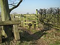 Stile to a recently sown field - geograph.org.uk - 695888.jpg