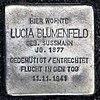 Stolperstein Kurfürstenstr 58 (Tierg) Lucia Blumenfeld.jpg
