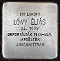 Stolperstein für Elias Löwy (Miskolc).jpg
