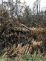 Stony Creek Bridge NRHP 99001467 Clinton County, MI.jpg