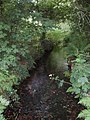 Stream near Clowance wood - geograph.org.uk - 196827.jpg