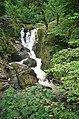 Stream near Tobermory, Mull - geograph.org.uk - 1434499.jpg