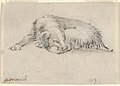 Study of a Sleeping Dog MET DP837797 ff.jpg