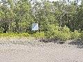 Sundarban National Park in India 03.jpg