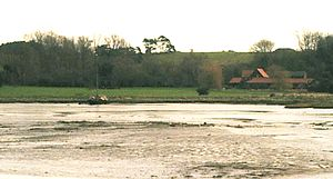 Sutton Hoo - Sutton Hoo from the Deben tideway with Mound 2 visible on the horizon above the farm