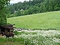 Sylvan Scene at Pension Raclette - Nakafurano - Hokkaido - Japan - 03 (48006039598).jpg