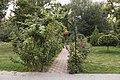 Taganrog. City and pharmacy garden. 7217.jpg