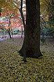 Tatsuno Shuentei06bs4592.jpg