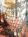 Tay lưới sót của làng Thủy Ba.jpg