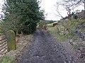 Teal Lane - geograph.org.uk - 1750139.jpg