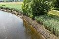 Technisch-biologische Ufersicherung an der Wümme, Versuchsstrecke 2 (50678790442).jpg