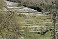 Terrassebau zu Kanech-101.jpg