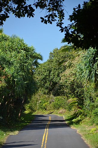 "Hawaii Route 137 - Image: The ""Red Road"" in front of Kalani (a 0004883) panoramio"