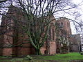 The Abbey and a beech tree - geograph.org.uk - 1722894.jpg