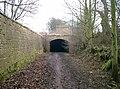 The Dark Arch - geograph.org.uk - 38241.jpg