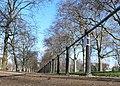 The Mall - geograph.org.uk - 1156183.jpg