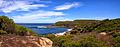 The Royal National Park Coast Track - panoramio (8).jpg