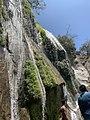 The Secret Beauty of Nature in Srilanka D486B74C-64BF-4B1D-8BF2-08FC2930A878.jpg