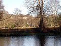 The Tweed at Dryburgh Abbey - geograph.org.uk - 1463.jpg
