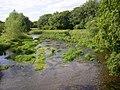 The river from Loughcapple Bridge - geograph.org.uk - 207549.jpg