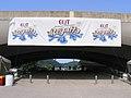 Three Rivers Regatta banners.jpg