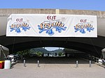 Three Rivers Regatta banners.jpg